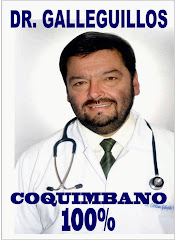 Dr. Cristian Galleguillos Vega