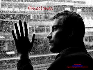 Psicologia, gestalt, emociones, emociones toxicas, Aida Bello Canto, Enojo toxico, Exigencia
