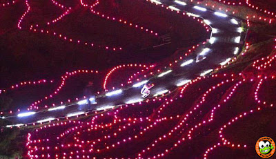 Wow! Sawah di Jepang Dihiasi 20.000 Lampu LED