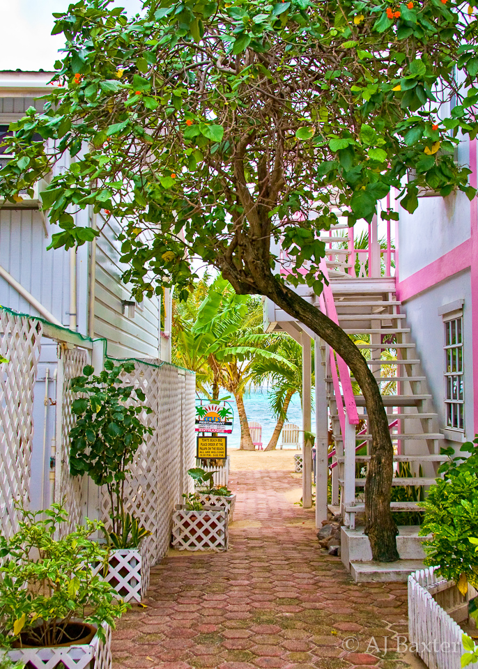 Image: Colourful alley in San Pedro Town, Ambergris Caye, Belize