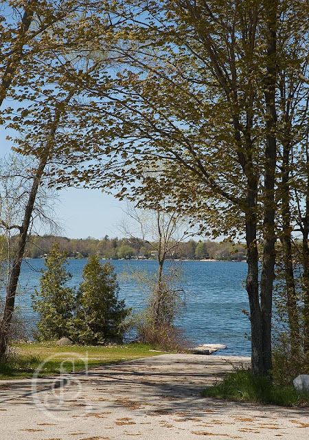 the boat launch area in Bass Lake Provincial Park, Orillia