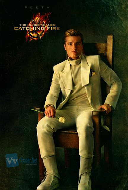 The Hunger Games Catching Fire Peeta Poster HD