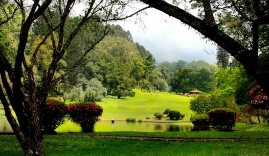 Kebun Raya Cibodas tempat wisata di cianjur