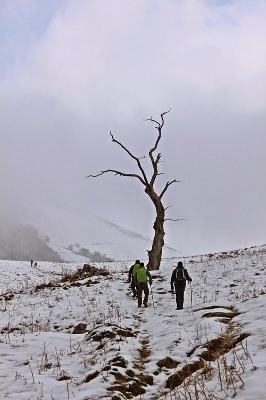 Un peu avant le col de Nékaitz la couche de neige devient plus épaisse