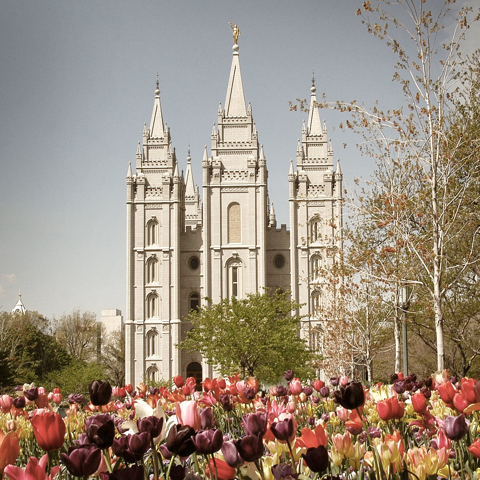 Learn more about the LDS faith