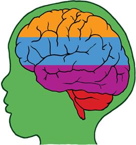 Kecerdasan Otak Anak