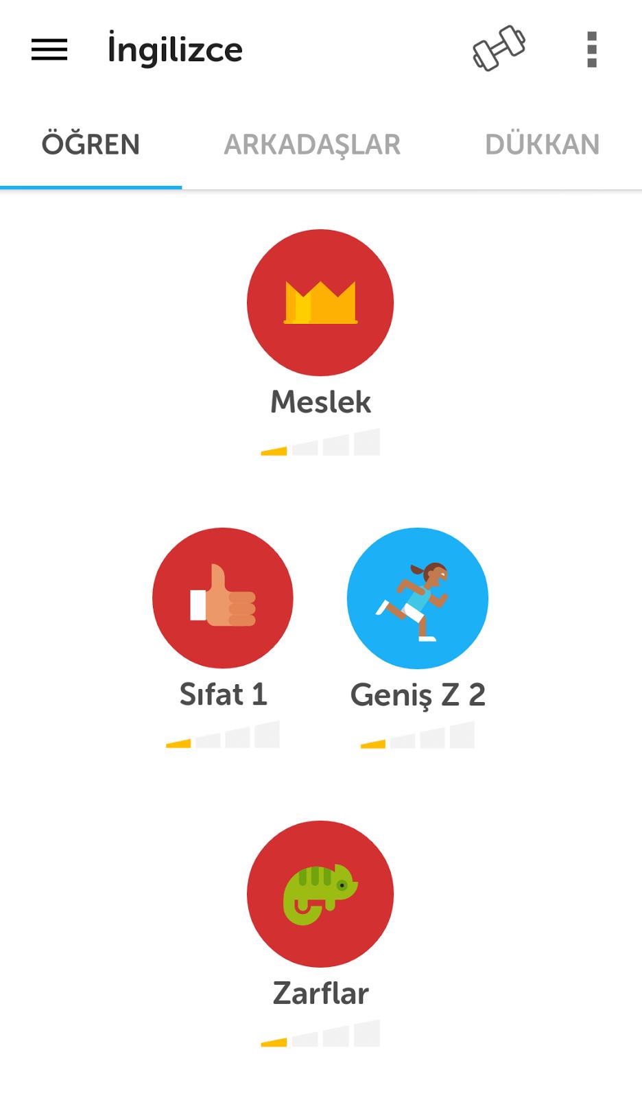 Duolingo-androidAcini-Konular