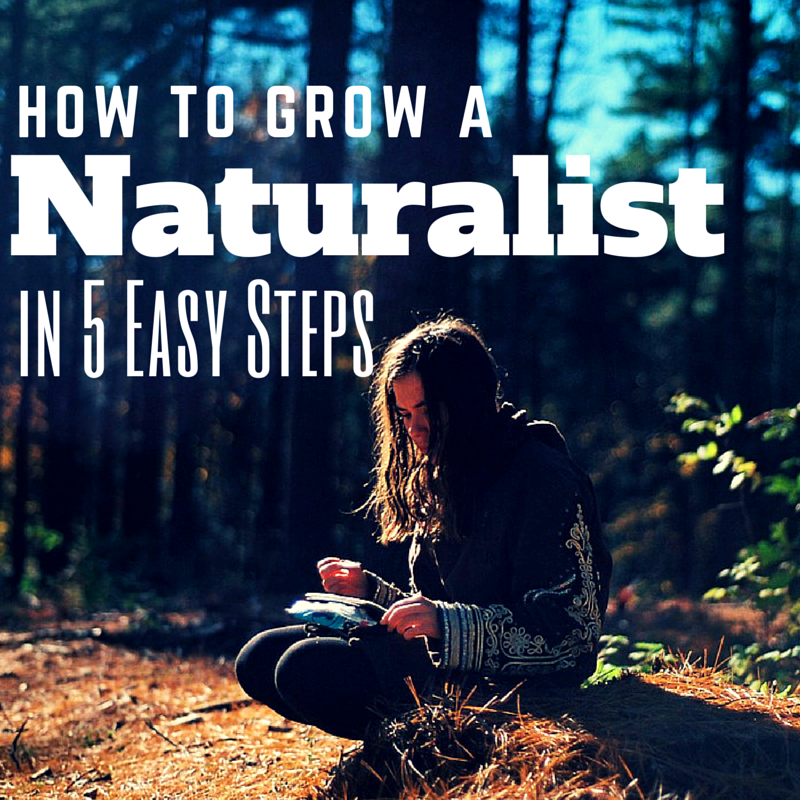 Do you have a child who loves exploring nature? Here are 5 tips for growing a naturalist.