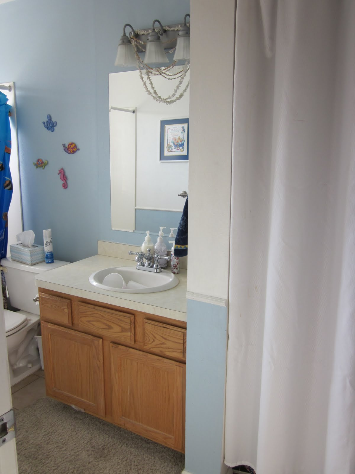 Brown bathroom shower curtains - Light Blue Bathroom With Light Blue Paint