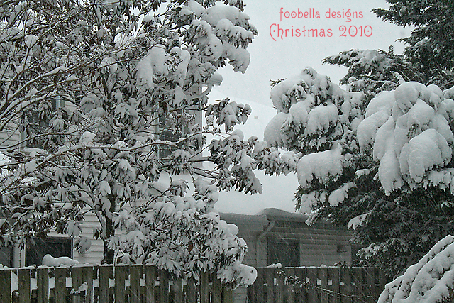 Christmas Snow 2010 via www.foobella.blogspot.com