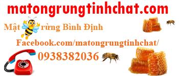 Mật ong rừng tinh chất Bình Định