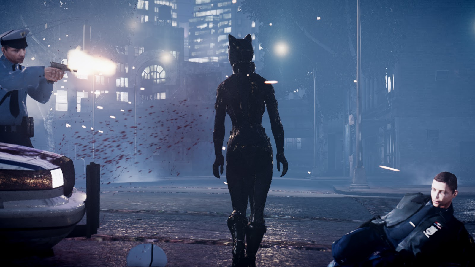 Arkham city cat woman mod erotic photo