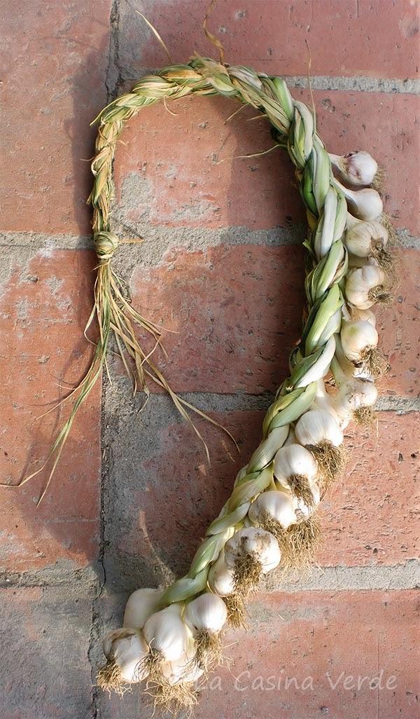 treccia aglio