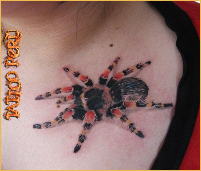 FOTOS DE TATUAJES Tatuajes_de_aranas