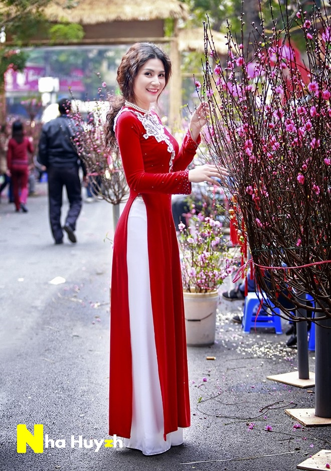 Fantastic Traditional Vietnamese Women Dress National Clothing In Vietnam Ao