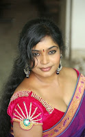 Actress Jayavani hot in transparent saree gallery
