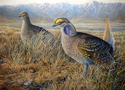 Sharp tailed grouse painting by Oregon wildlife artist Shari Erickson