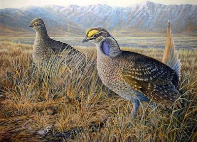 Sharp tailed grouse painting by Oregon wildlife artist Shari Erickson