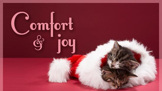 comfort-and-joy-550 x 320