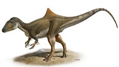 dinosaurus baru Concavenator Corcovatus