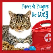Purrs for Lucy