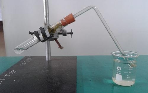 Idea P&P Sains : Oksigen Diperlukan Dalam Respirasi