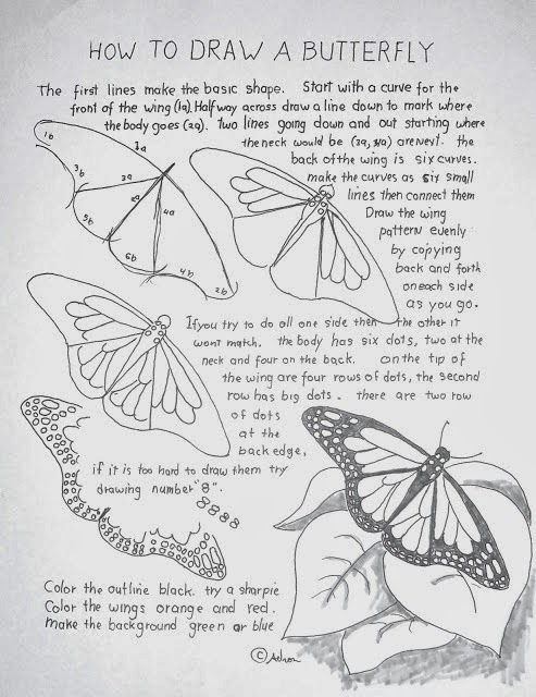 http://drawinglessonsfortheyoungartist.blogspot.ca/2012/06/how-to-draw-monarch-butterfly-lesson.html