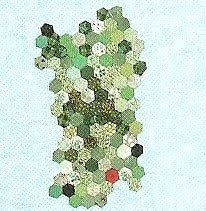 Quilt Italia - Socie della Sardegna