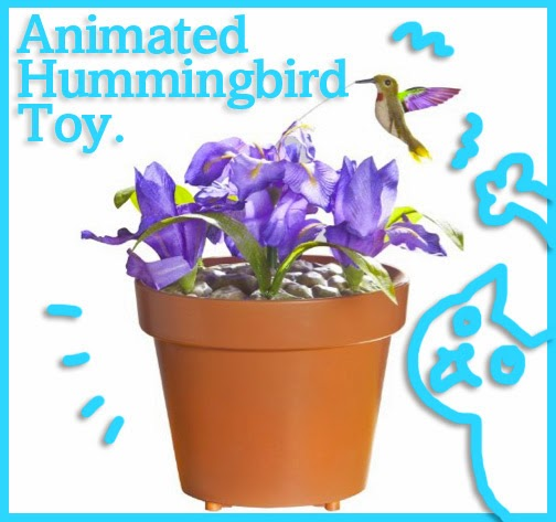 Hummingbird  Gemmy cat