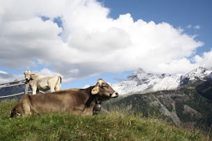 Alpe Ponte e Cima Sassa