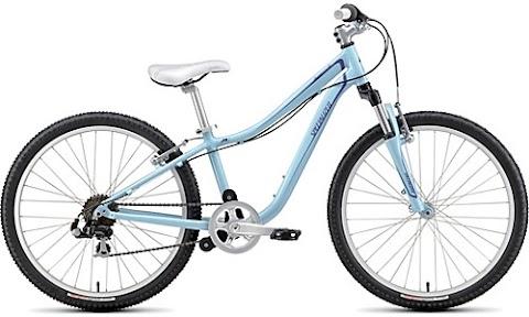 A Practical Bike for Tokyo.