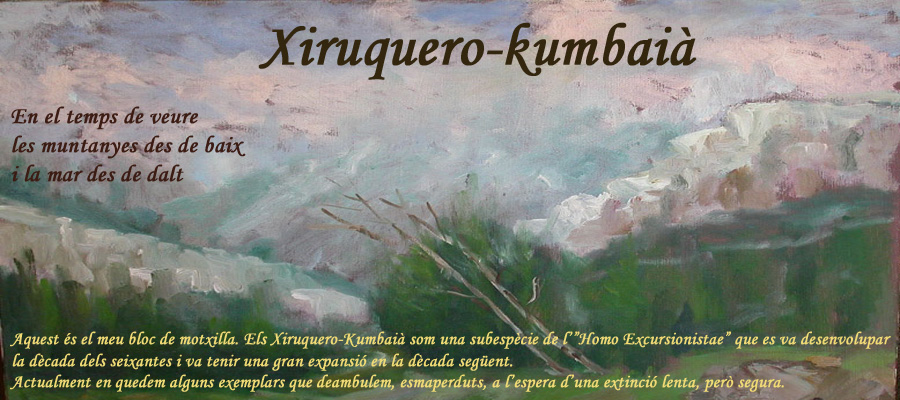 Xiruquero-Kumbaià