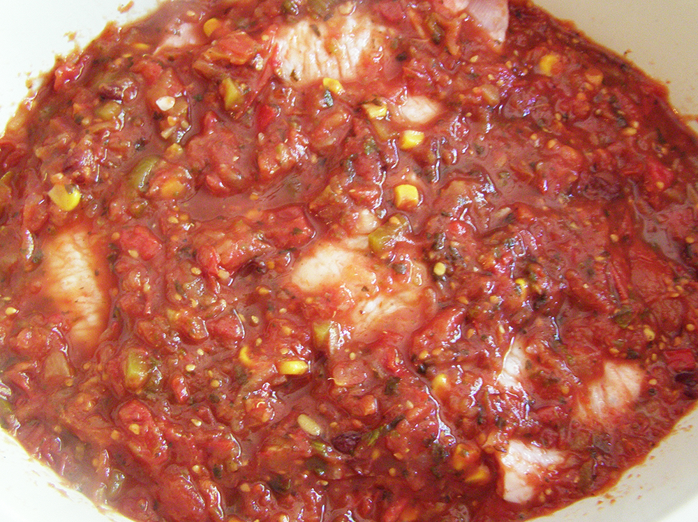 Turkey and Salsa in Slow-cooker Before Cooking