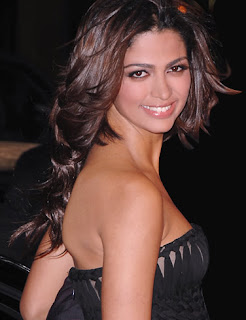 Matthew McConaughey wife Camila Alves