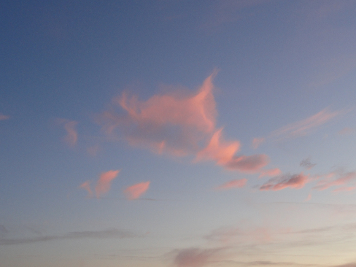 http://4.bp.blogspot.com/-oR3rwJ3i9wM/TlIrSamtxZI/AAAAAAAAUts/58JPtmZZEJg/s1600/pink+cloud.JPG