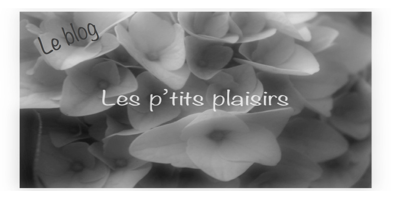 Blog : Les P'tits Plaisirs