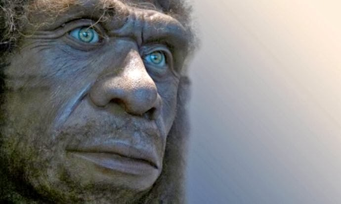 The Neanderthals' genetic legacy