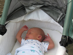 Baby Sam King