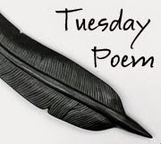 Visit Tuesday Poem