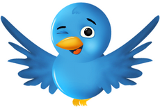 Seguime por Twitter