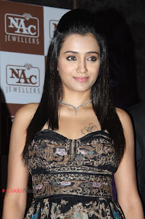 Trisha Pictures at NAC Jewellers Necklace Launch Event ~ Celebs Next