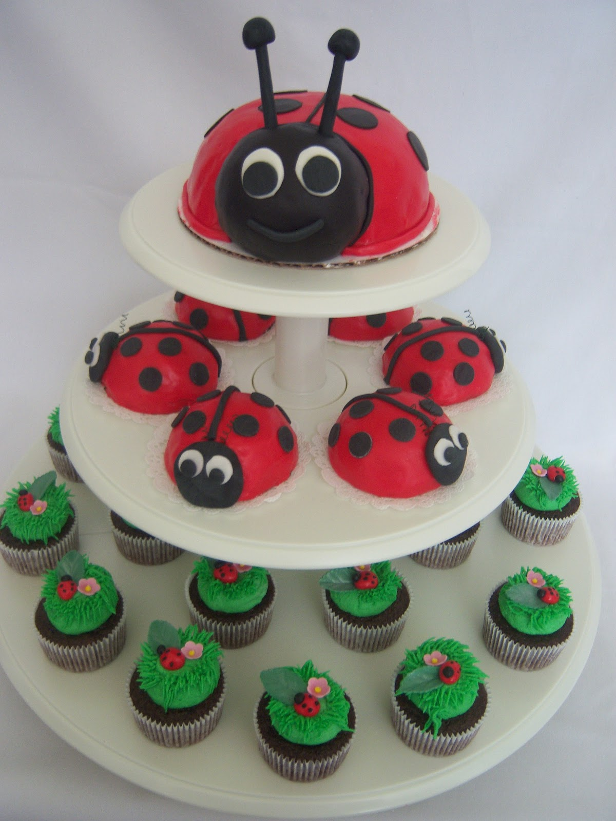 Creative Cakes By Angela Ladybug Cake And Cupcakes