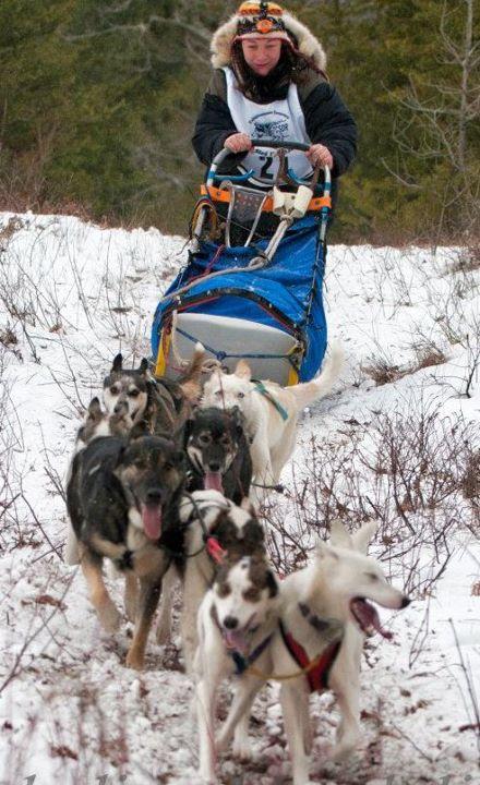 Dog Training Lee Ma