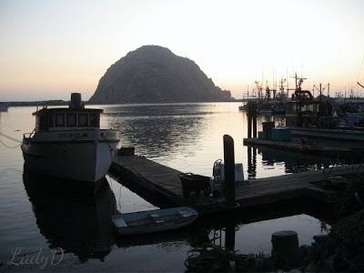 boat dock in morro bay