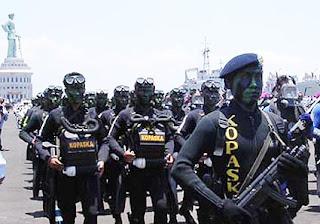 7 Pasukan Khusus Yang Dimiliki Indonesia [ www.BlogApaAja.com ]