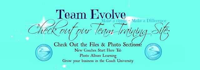 Team Evolve Training Sight