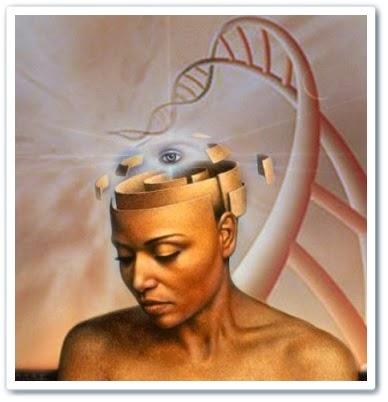 Активация 12 слоев ДНК