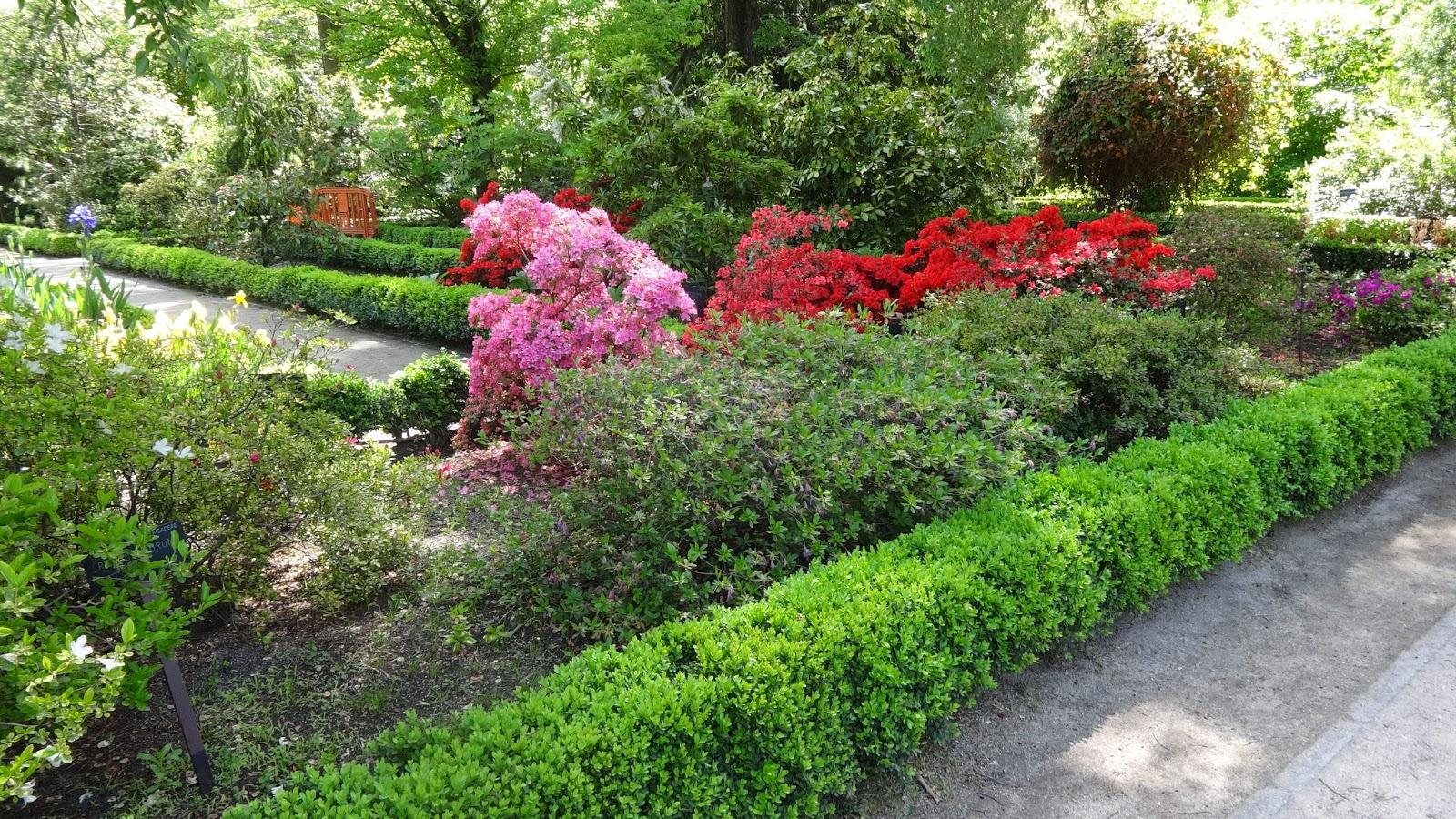 Jardin de plantas aromaticas jardin vertical de hierbas - Jardin de aromaticas ...