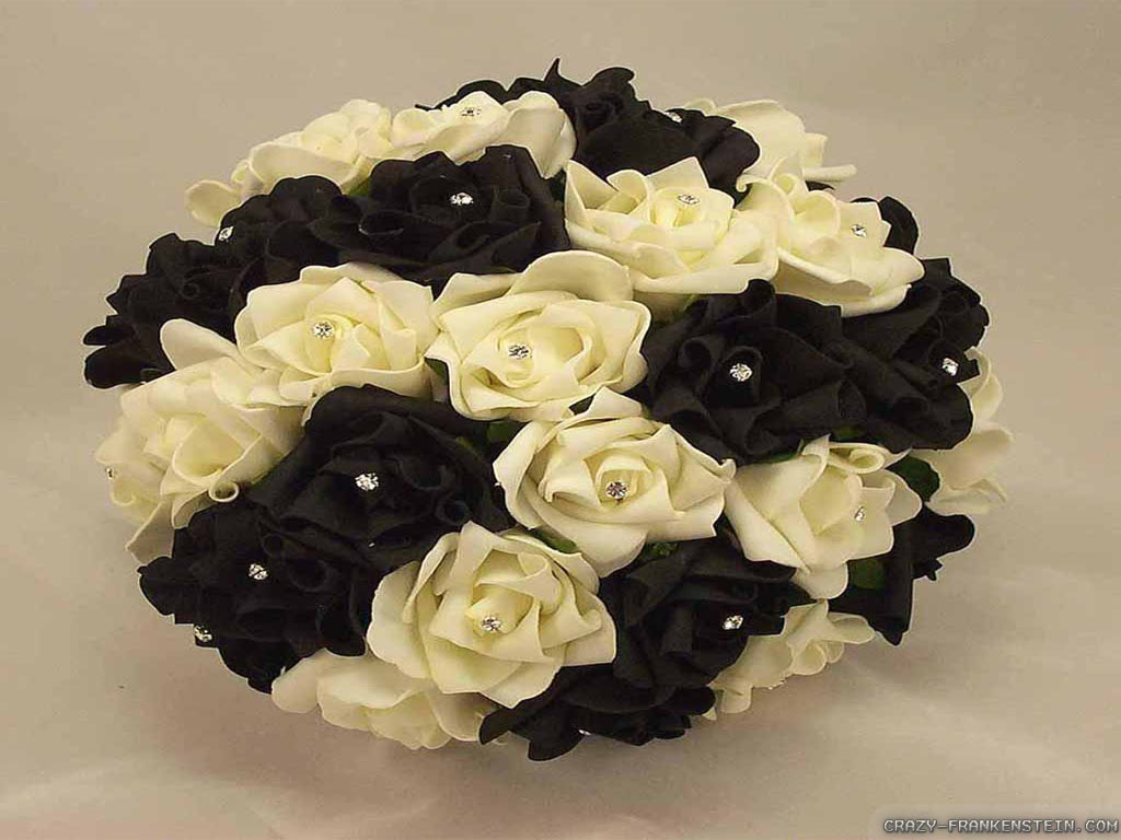 Rose Is In The Interest Of People Because This Flower Beautifulbut You Have To Be Careful Spiked Below I Show Black White