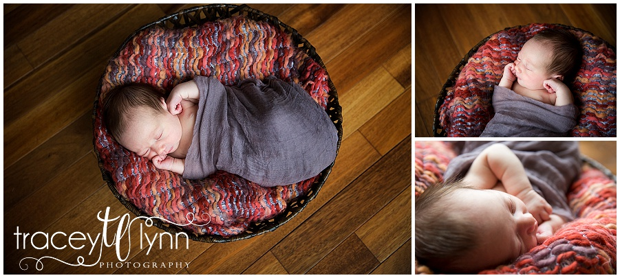 northville mi newborn photographer